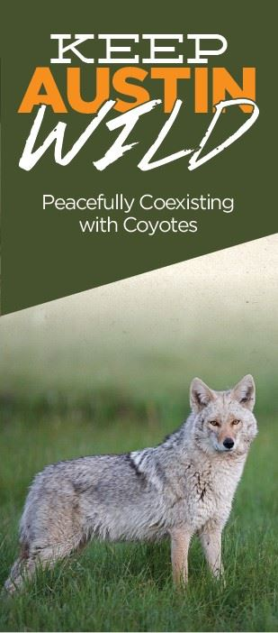 coyote brochure cover